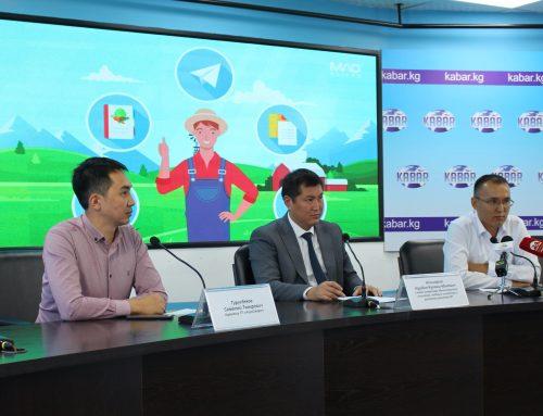 Впервые для фермеров Кыргызстана создали онлайн помощника